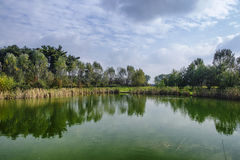 Grugnotorto park Brianza, Italy Royalty Free Stock Photography