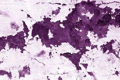 Grugy水泥在紫色口气的墙壁纹理 免版税库存图片