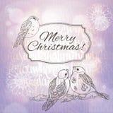 Grußkarte der frohen Weihnachten mit Dompfaffen und Schneeflocken auf dem lila Steigungshintergrund mit Sonnenlicht Lizenzfreie Stockbilder