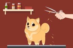 Grumer für Hund Lizenzfreie Stockfotos