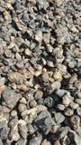 Grumi naturali del manicotto in gomma Fotografia Stock