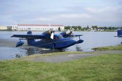 Grumman Widgeon. Blue Grumman Widgeon Taxing on to shore Stock Images