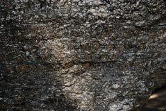 Grumo di carbone vicino Immagine Stock