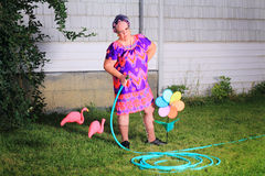 Grumpy granny doing yard work. Silly image of an grumpy senior gray haired granny  lady wearing cat eye glasses, a muumuu dress, pearls and curlers in her hair Royalty Free Stock Photos