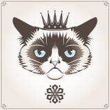 grumpy katt stock illustrationer