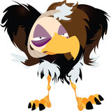 Grumpy Vulture Illustration Stock Images