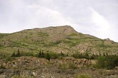 Grund av berget i Alaska royaltyfri foto