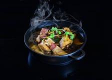 Grund för soppa kinesHotPot för kinesisk stil Arkivbild