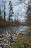 Grund flod i Zakarpattia Oblast i Ukraina Royaltyfri Fotografi