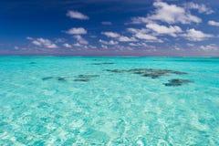 Grund korallrev i genomskinligt vatten för turkos, kock Islands Royaltyfria Foton
