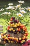 Grund mångfärgad körsbär på en flaska som täckas med vävt ris av pilen och buketten av margaritor arkivfoto