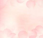 grund pink för petals för bakgrundsdof-blomma stock illustrationer