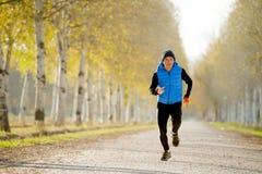 Grundar den rinnande det fria för sportman i av vägslinga med träd under härligt höstsolljus Arkivfoto
