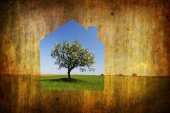 Grundbesitzkonzept mit Hausaufbau Stockfotografie