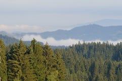 Grunddampf in den Bergen stockbild