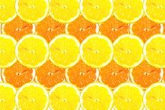 Grundieren Sie gefüllt mit Scheiben der Zitrone Stockfoto