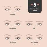 5 grundläggande ögonbrynformer Arkivbild