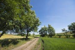 Grundstraße in einer ländlichen Landschaft Stockbild