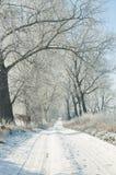 Grundstraße im Winter Lizenzfreie Stockfotografie
