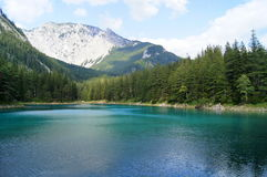 Gruner see, Austria. Grüner See (Green Lake) is a lake in Styria, Austria near the town of Tragöß. The lake is surrounded by the Hochschwab mountains and Royalty Free Stock Photo