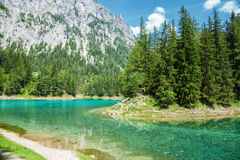 Gruner See with crystal clear water in Austria Stock Photo