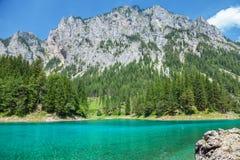 Gruner sehen mit haarscharfem Wasser in Österreich Lizenzfreies Stockbild