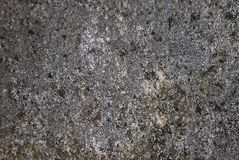 Grung wall texture Stock Images