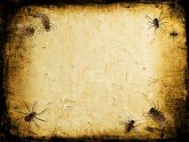 grunge昆虫 皇族释放例证
