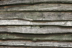 Grunge木头纹理 库存图片
