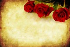 grunge红色玫瑰 图库摄影