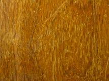 grunge纹理木头 免版税库存照片