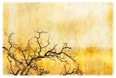 grunge结构树 免版税库存图片