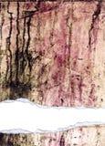 grunge被撕毁的被剥去的纹理 免版税库存照片