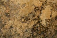 Grunge ścienny brown tło Abstrakcjonistyczna stara tekstura z kopii przestrzenią obraz royalty free
