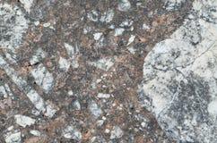 grunge μακρο σύσταση πετρών χρησιμοποιούμενη Στοκ Εικόνες