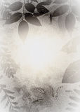grunge σκιαγραφία φύλλων Στοκ εικόνες με δικαίωμα ελεύθερης χρήσης