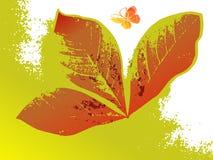 grunge абстрактной бабочки предпосылки флористическое Стоковое Изображение RF