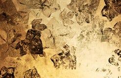 grunge античной предпосылки флористическое Стоковая Фотография RF