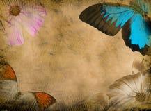 grunge бабочки предпосылки Стоковое Фото