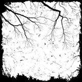 grunge ветви предпосылки Стоковое Изображение RF