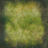 grunge влияний зеленое выходит обои сбора винограда Стоковые Фотографии RF
