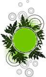 grunge знамени флористическое Стоковые Фото