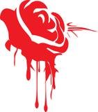 grunge капания подняло Стоковое Изображение