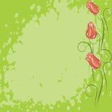 grunge предпосылки зеленое Стоковое Изображение RF