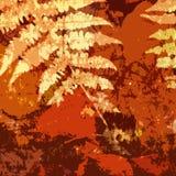 grunge предпосылки искусства флористическое стоковые изображения rf