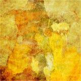 grunge предпосылки искусства флористическое Стоковые Фото