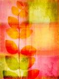 grunge предпосылки красивейшее цветастое Стоковая Фотография