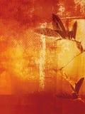 grunge предпосылки красивейшее Стоковая Фотография RF