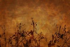 grunge предпосылки флористическое Стоковая Фотография RF