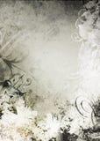 grunge предпосылки Стоковое Изображение RF